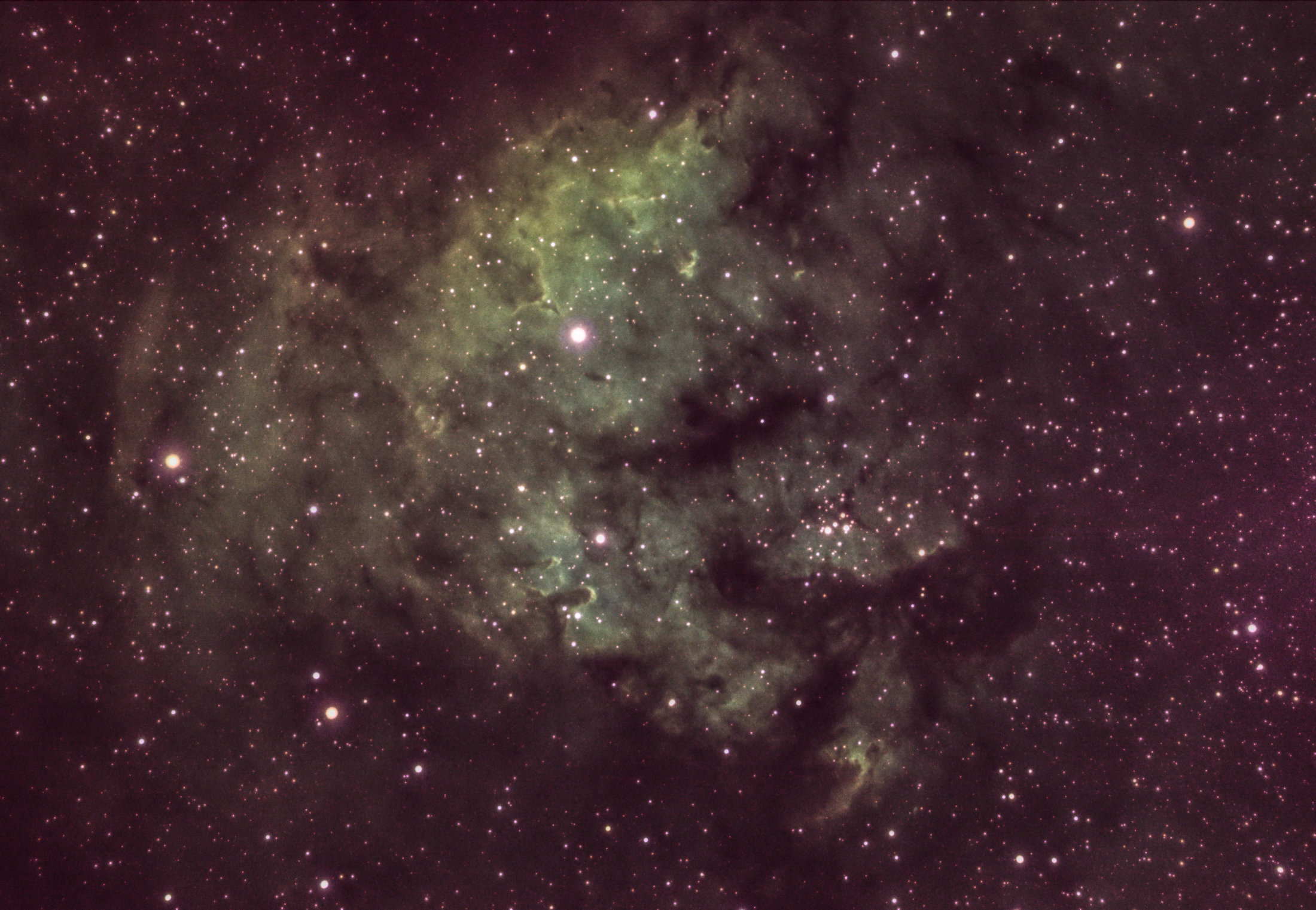 NGC7822 - Pedro Sánchez