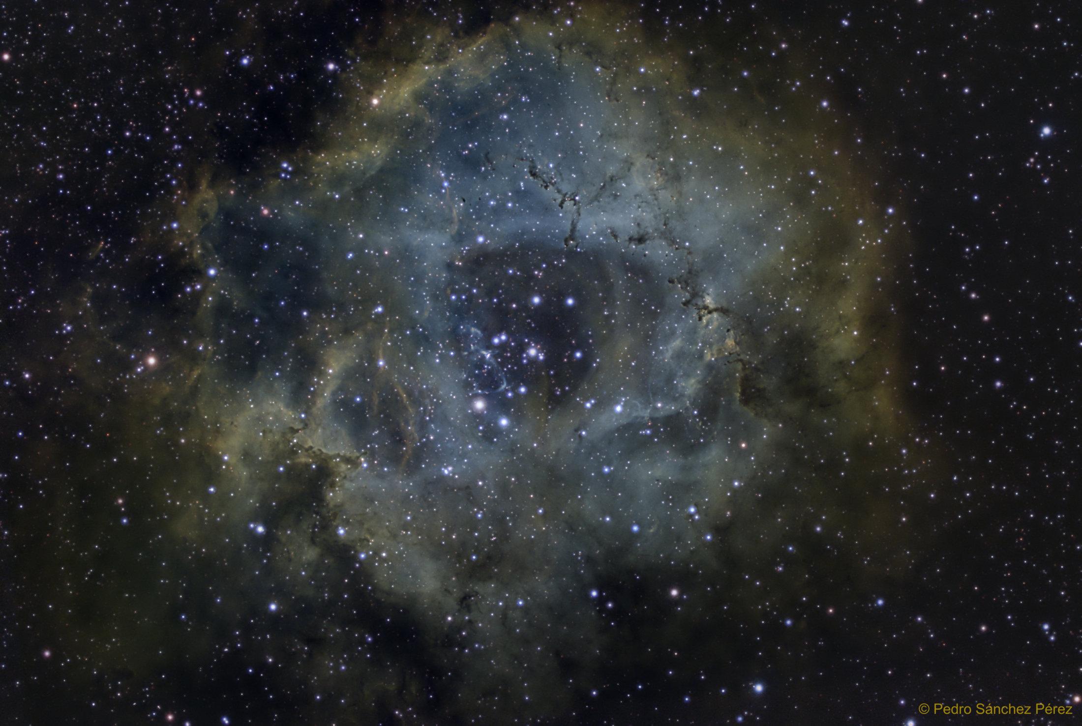 NGC2263 - Pedro Sánchez