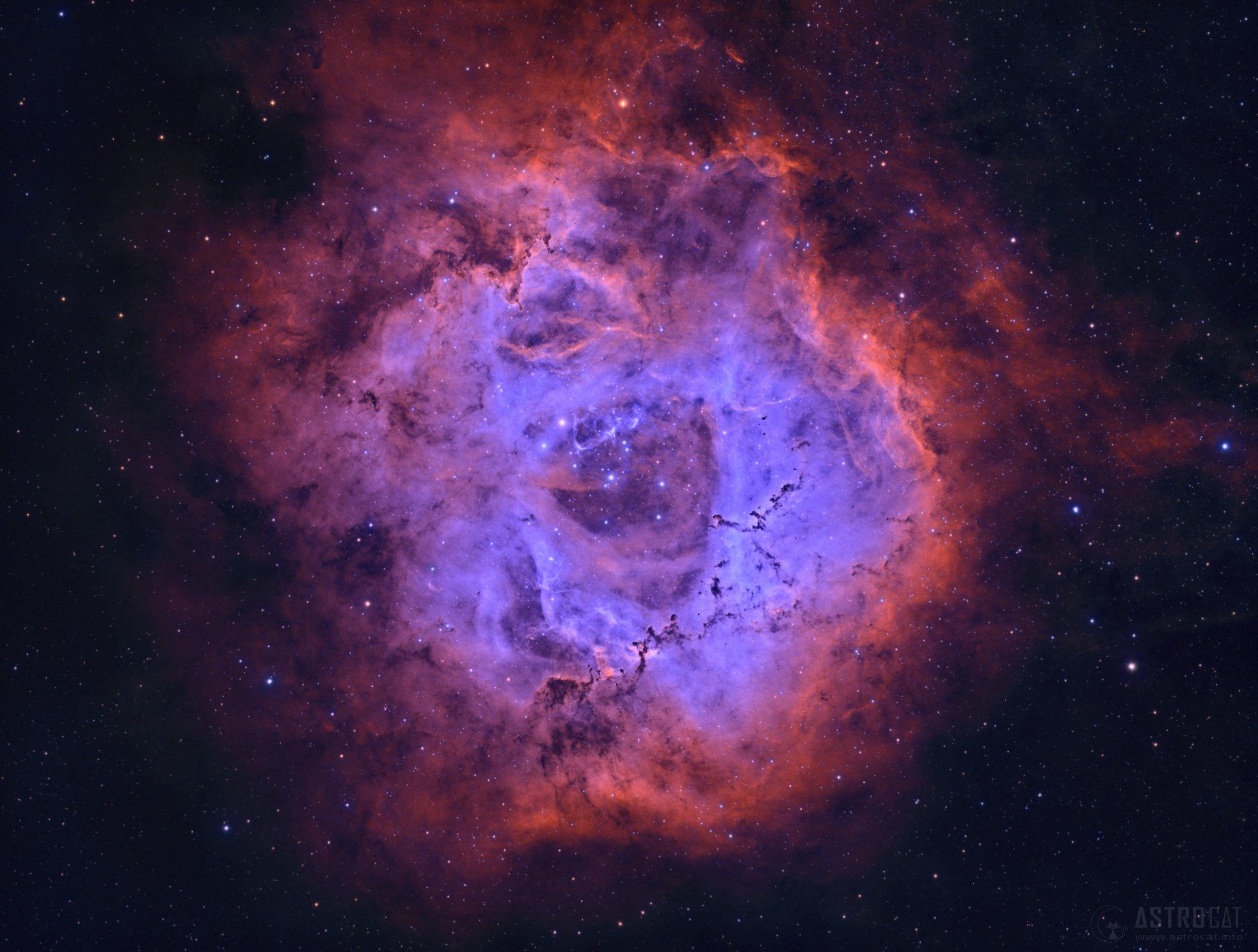 Nebulosa Rosetta - NGC 2237 - Aleix Roig