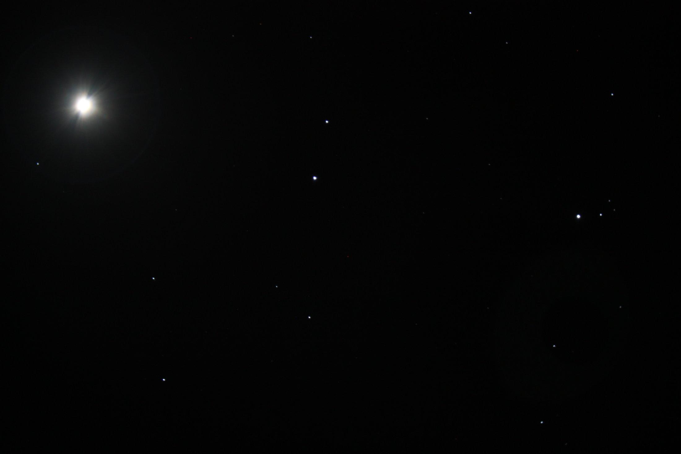 Venus - Joan Grados
