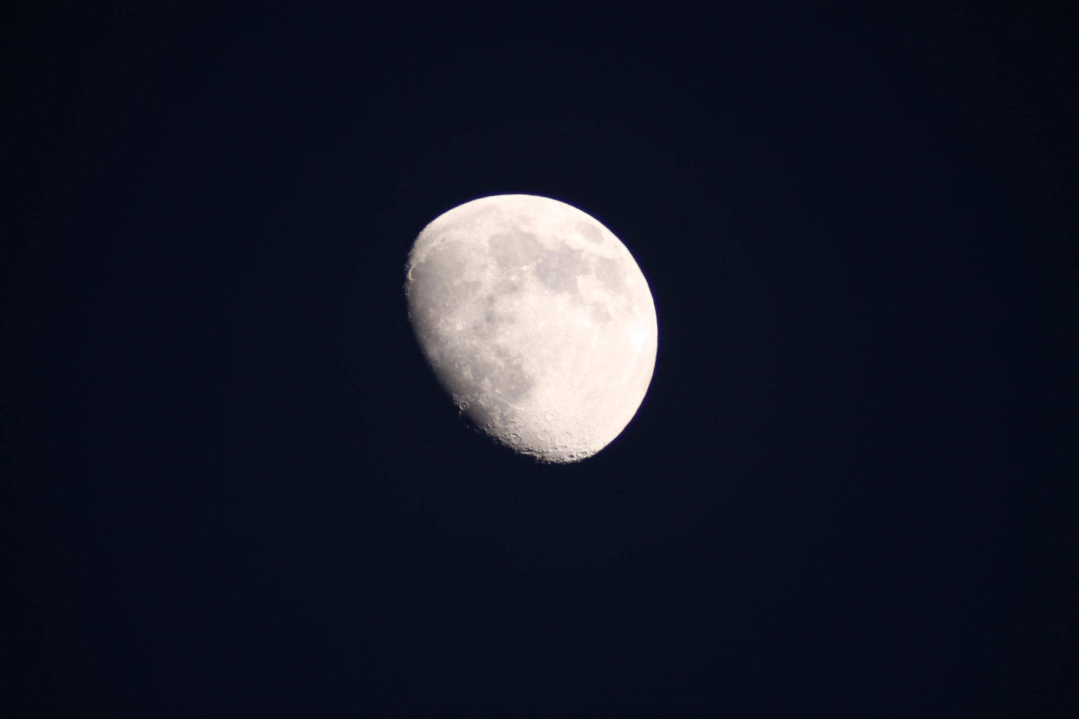 Lluna - Jaime Pla