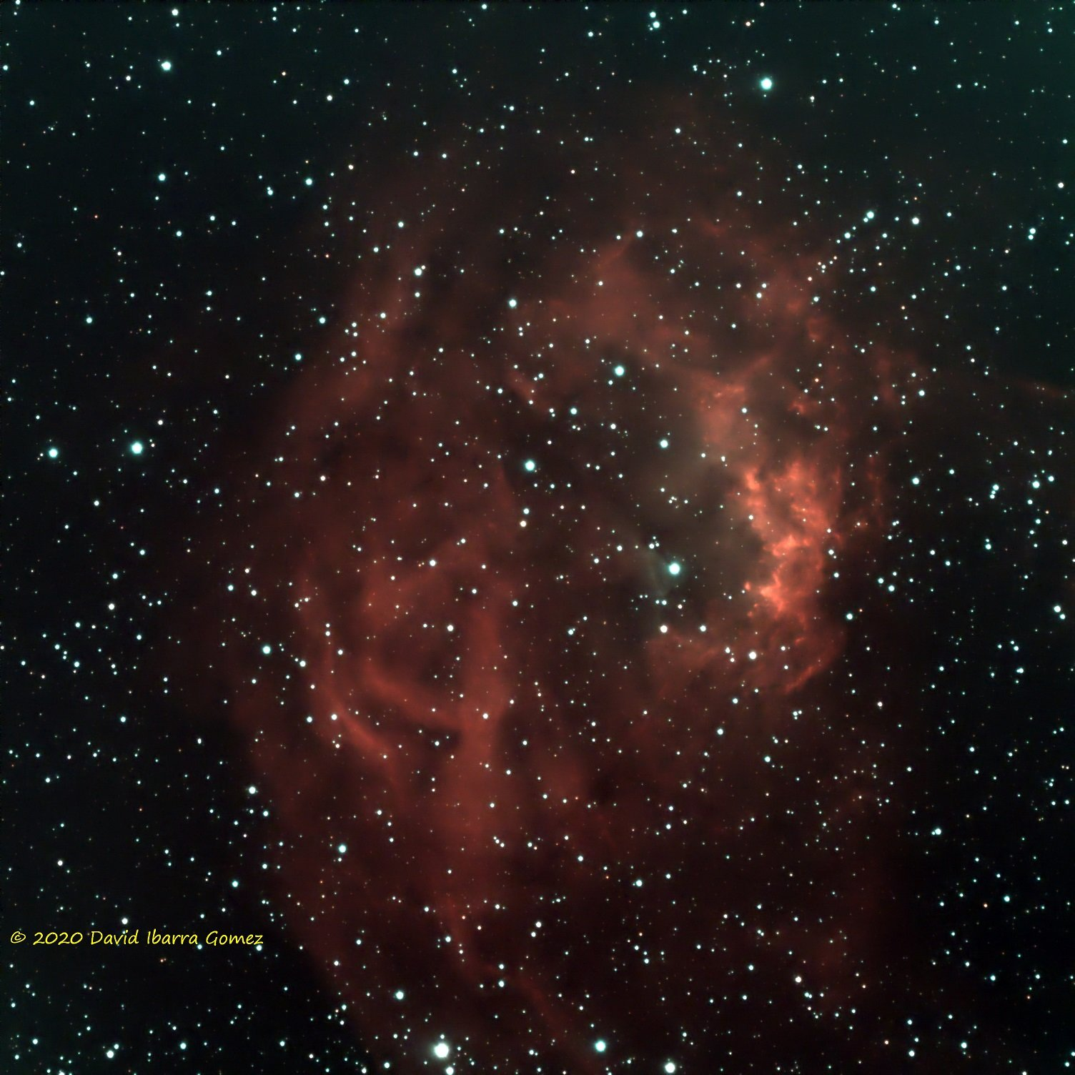 Lower Nebula - David Ibarra