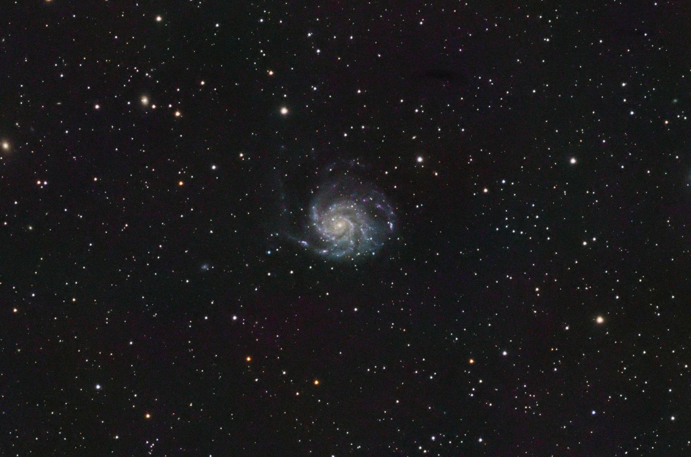 M101 - Adripa Igualada