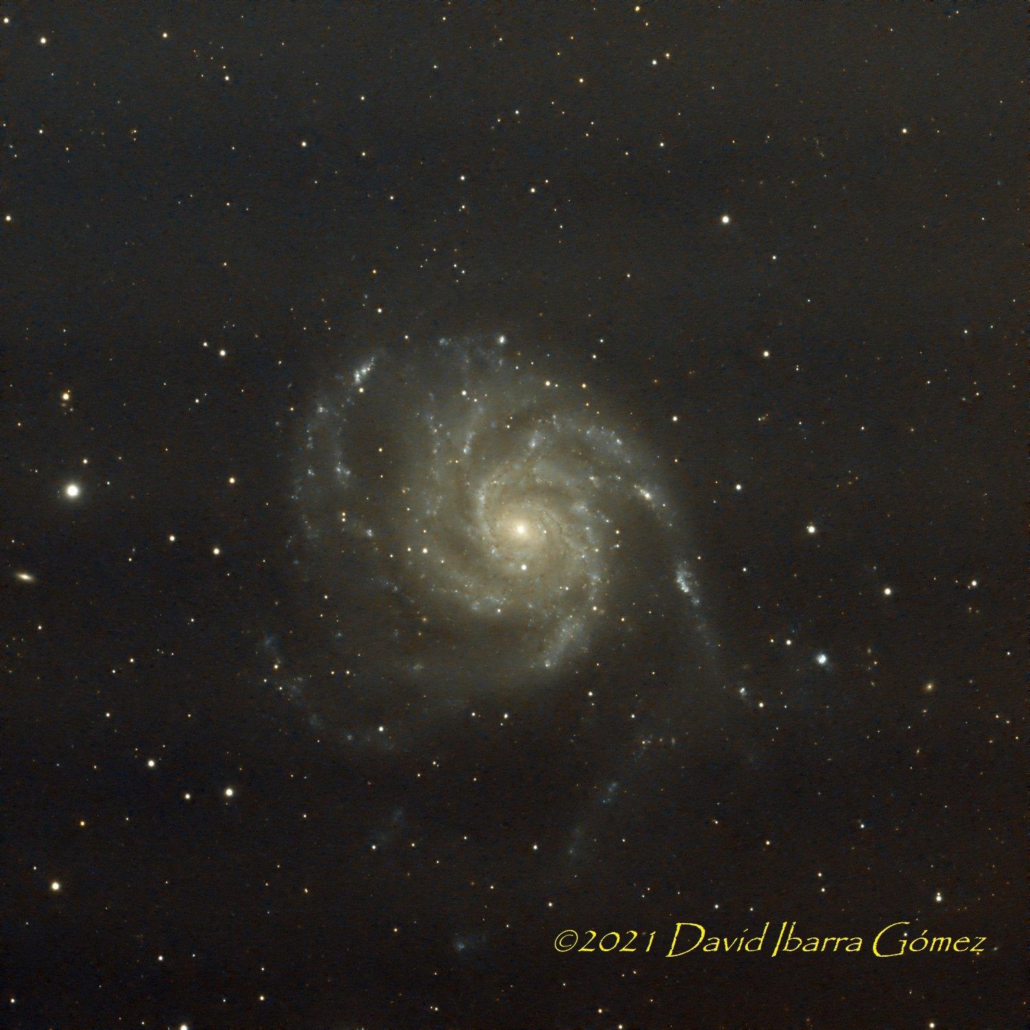 M101 - David Ibarra