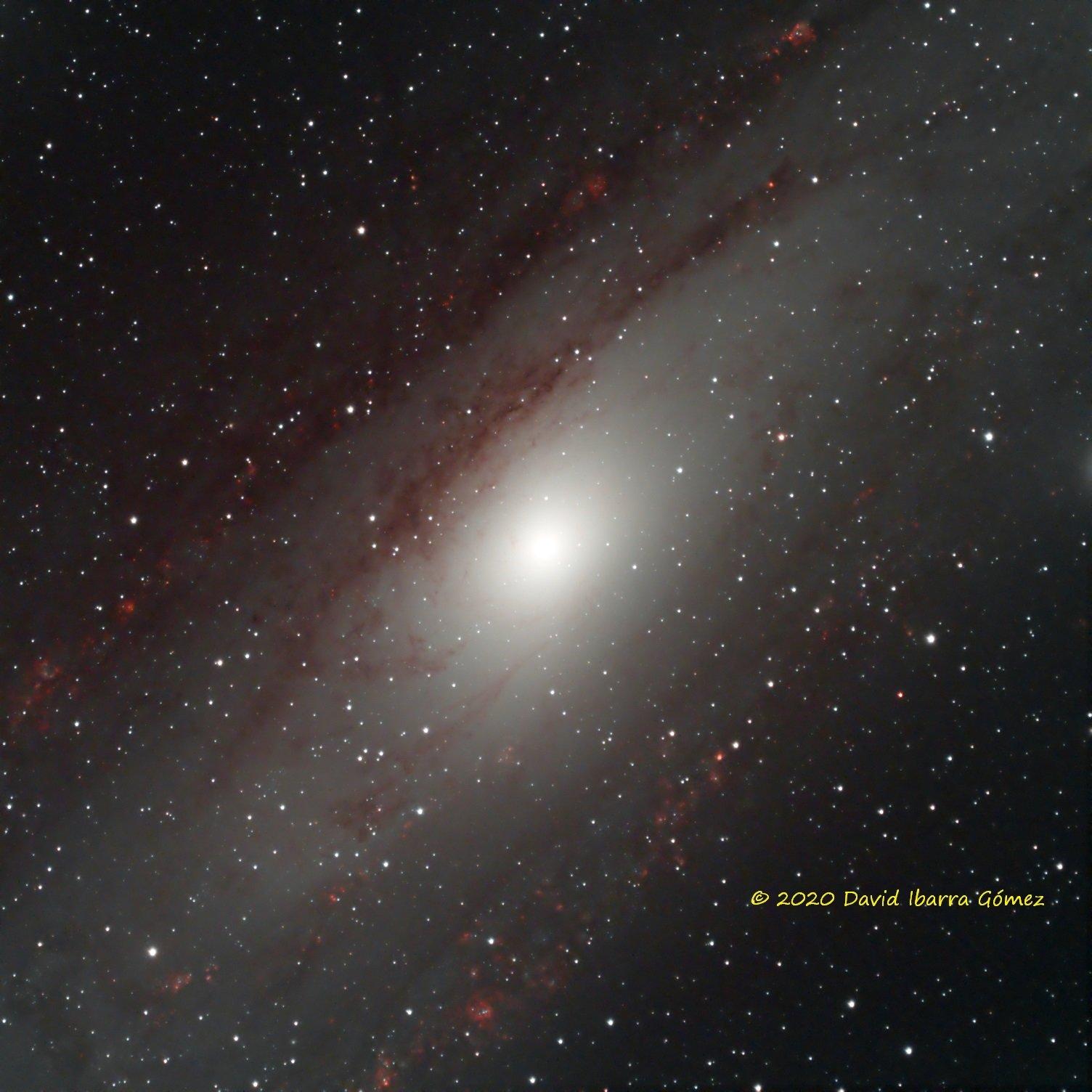 M31 - David Ibarra