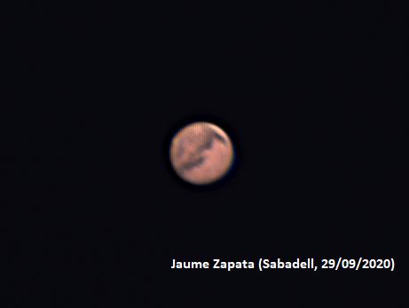 Mart - Jaume Zapata