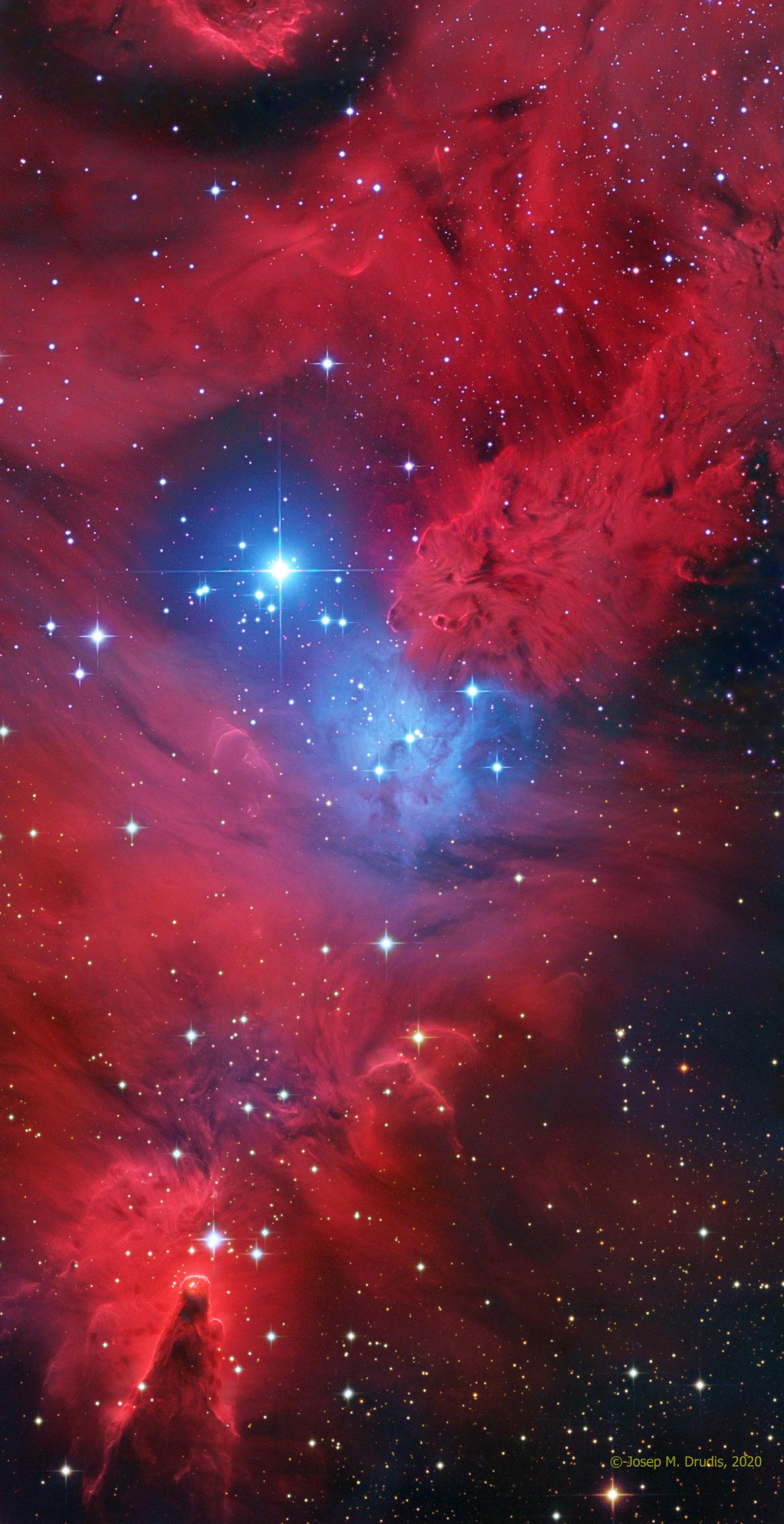 NGC 2264 - Josep Maria Drudis