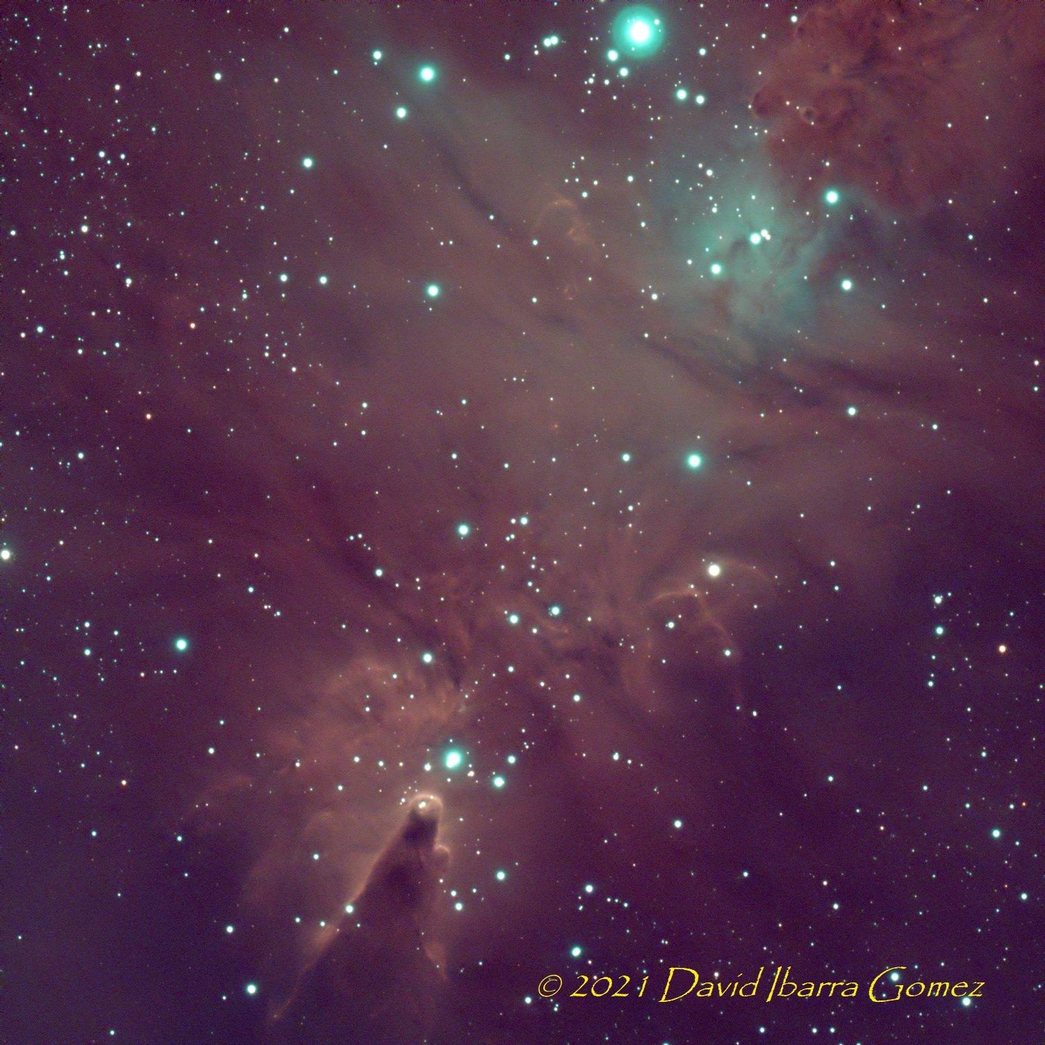 Nebulosa Del Cono - David Ibarra
