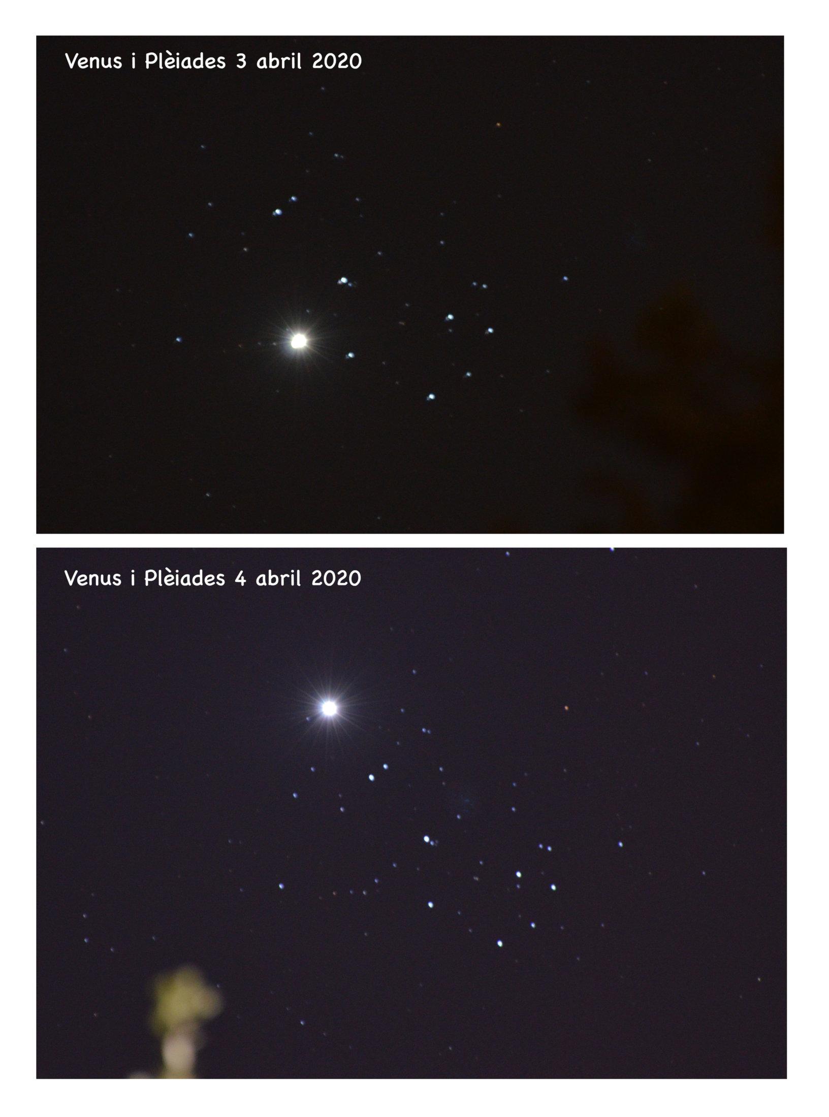 Venus i Pleiades - Mercè Monzonís