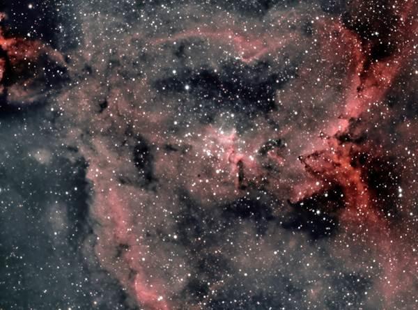 IC1805 - David Rius
