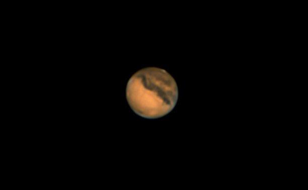 Mart - Aleix Roig