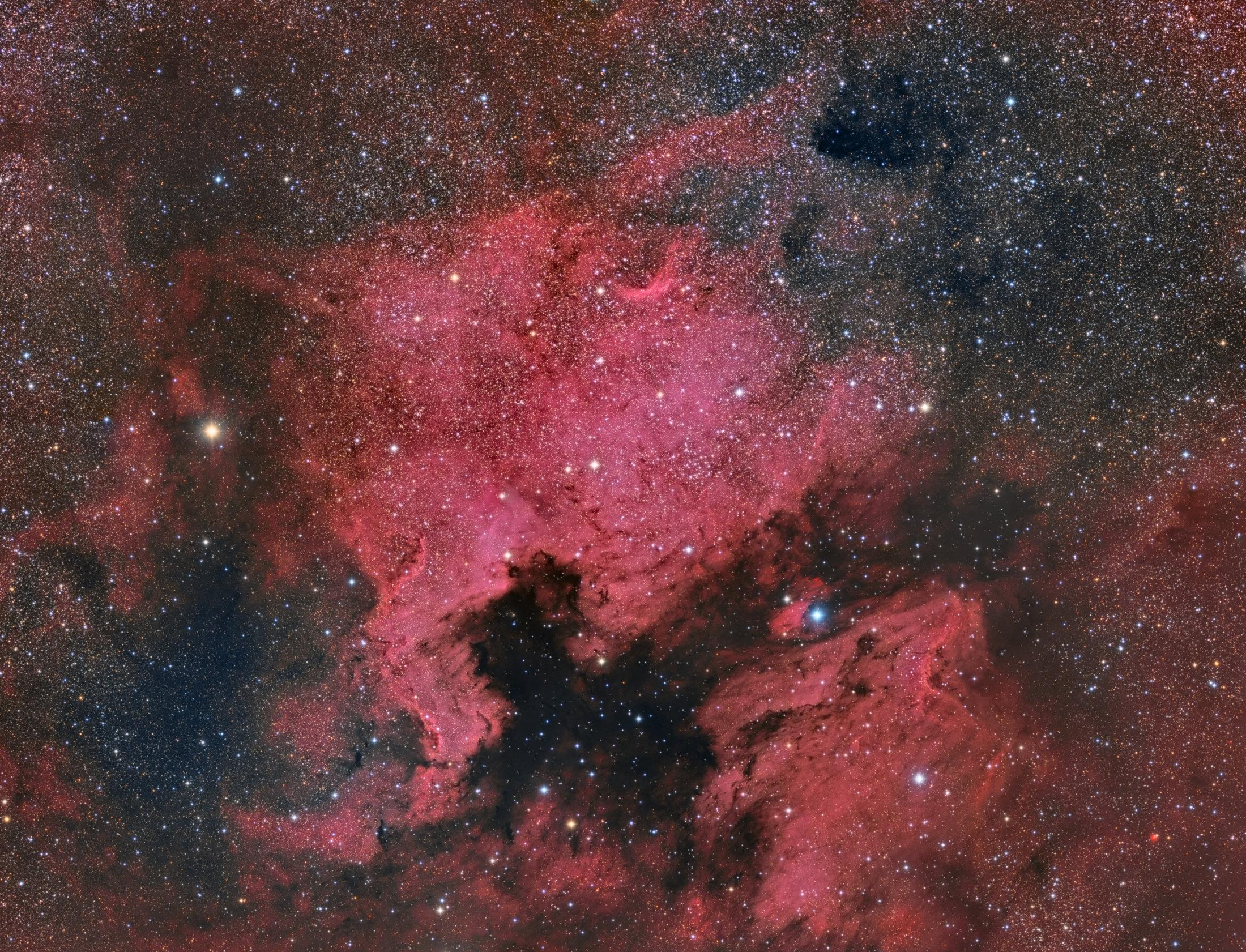NGC7000 - Manel Martin